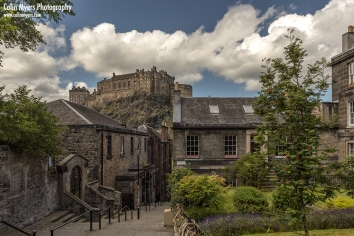 The Vennel & Brown's Place